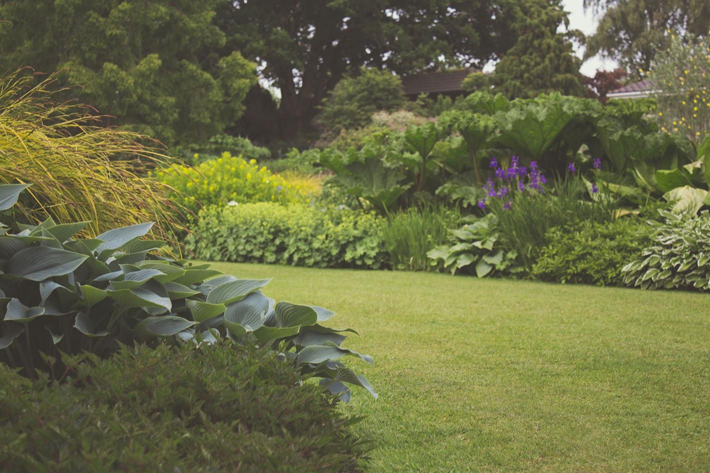 green-garden-lawn